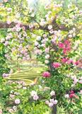 Secret Garden - watercolour by Dorothy Pavey