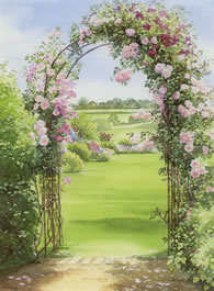 'New Dawn' Rose Archway - watercolour by Dorothy Pavey